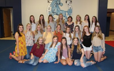 2019-2020 Varsity Cheerleaders